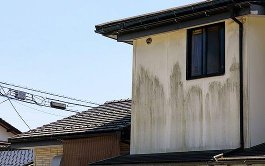 【漏電やカビ】雨漏りによる二次被害に注意