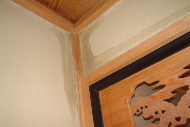 危険な兆候1:天井にカビやシミが発生した