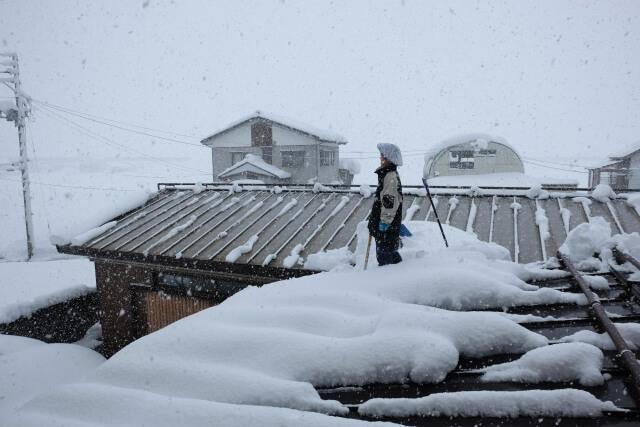 雪災による被害