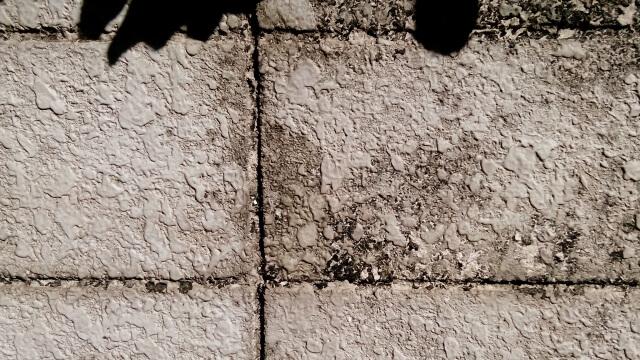 wall_210609